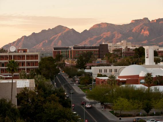Photo of UArizona campus along Cherry Street, looking north.